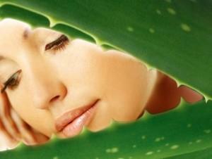 польза алоэ для кожи лица