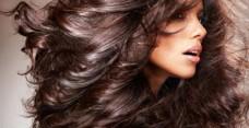 Масло жожоба для волос: правила применения и рецепты масок